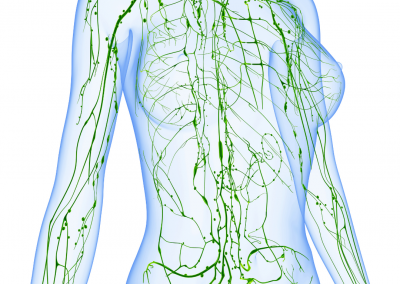 Infrared Sauna Therapy and Lymphatic System Stimulation - Trim Studio Clearwater FL